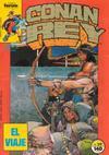 Cover for Conan Rey (Planeta DeAgostini, 1984 series) #29