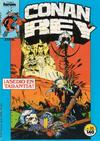Cover for Conan Rey (Planeta DeAgostini, 1984 series) #35