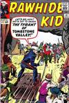 Cover for The Rawhide Kid (Marvel, 1960 series) #41