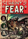 Cover for Haunt of Fear (EC, 1950 series) #13