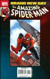 Cover for Spider-Man: Brand New Day (Marvel, 2008 series) #1
