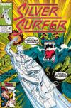 Cover for Silver Surfer (Play Press, 1989 series) #22/23