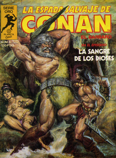 Cover for La Espada Salvaje de Conan (Planeta DeAgostini, 1982 series) #3