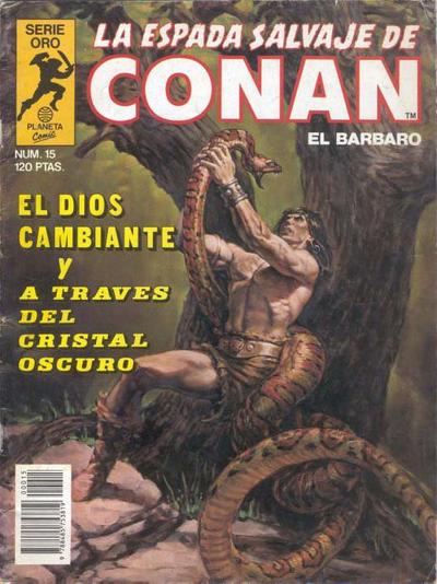Cover for La Espada Salvaje de Conan (Planeta DeAgostini, 1982 series) #15
