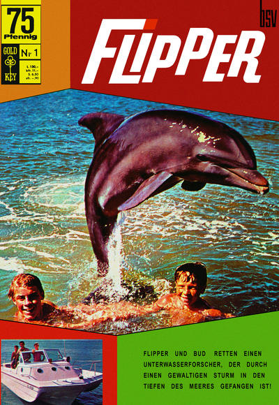 Cover for Flipper (BSV - Williams, 1969 series) #1
