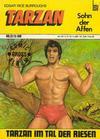 Cover for Tarzan (BSV - Williams, 1969 series) #12