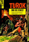 Cover for Turok (BSV - Williams, 1967 series) #15