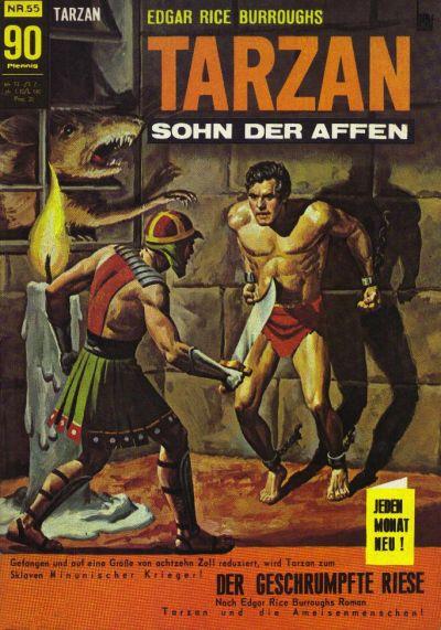 Cover for Tarzan (BSV - Williams, 1965 series) #55