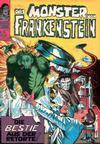 Cover for Das Monster von Frankenstein (BSV - Williams, 1974 series) #15