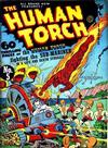 Cover for The Human Torch (Marvel, 1940 series) #5[b]