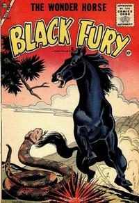 Cover Thumbnail for Black Fury (Charlton, 1955 series) #7