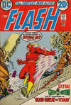 Cover for The Flash (DC, 1959 series) #221