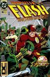 Cover for Flash (DC, 1987 series) #95 [DC Universe Corner Box]