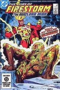 Cover Thumbnail for The Fury of Firestorm (DC, 1982 series) #19 [Direct]