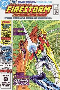 Cover Thumbnail for The Fury of Firestorm (DC, 1982 series) #24 [Direct]