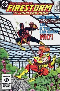 Cover Thumbnail for The Fury of Firestorm (DC, 1982 series) #28 [Direct]