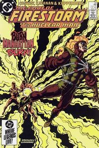 Cover Thumbnail for The Fury of Firestorm (DC, 1982 series) #33 [Direct Sales]