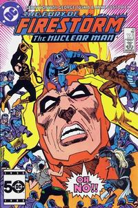 Cover Thumbnail for The Fury of Firestorm (DC, 1982 series) #45 [Direct Sales]