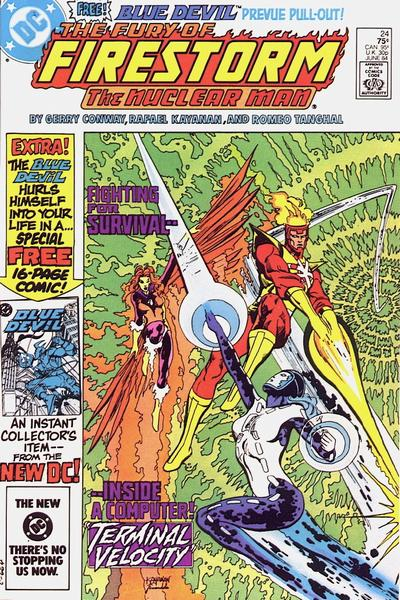 Cover for The Fury of Firestorm (DC, 1982 series) #24 [direct-sales]