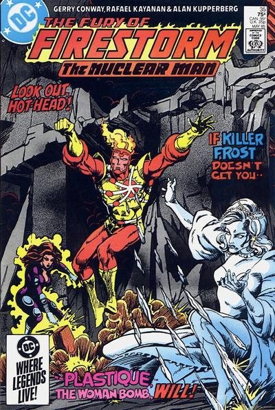 Cover for The Fury of Firestorm (DC, 1982 series) #35 [Direct Sales]