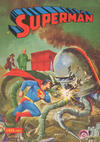 Cover for Superman Libro Comic (Editorial Novaro, 1973 series) #12