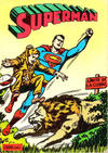 Cover for Superman Libro Comic (Editorial Novaro, 1973 series) #17