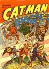 Cover for Cat-Man Comics (Temerson / Helnit / Continental, 1941 series) #v2#6 (19)
