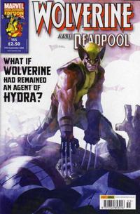 Cover Thumbnail for Wolverine and Deadpool (Panini UK, 2004 series) #155