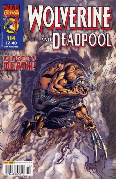 Cover for Wolverine and Deadpool (Panini UK, 2004 series) #114