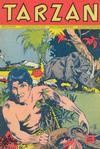 Cover for Tarzan (Pabel Verlag, 1956 series) #104