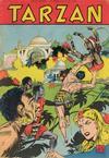 Cover for Tarzan (Pabel Verlag, 1956 series) #113