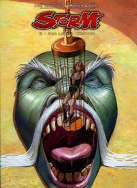 Cover Thumbnail for Storm (Splitter Verlag, 2008 series) #2 - Der letzte Kämpfer