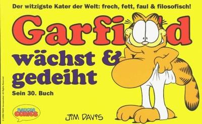 Cover for Garfield (Wolfgang Krüger Verlag, 1984 series) #30