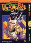 Cover for Dragon Ball (Bonnier Carlsen, 2000 series) #40