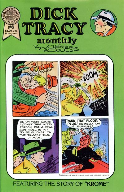 Cover for Dick Tracy Monthly (Blackthorne, 1986 series) #6