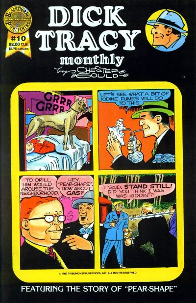 Cover for Dick Tracy Monthly (Blackthorne, 1986 series) #10