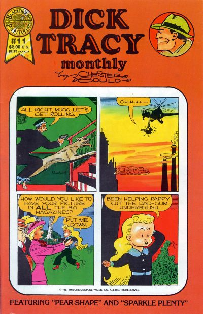 Cover for Dick Tracy Monthly (Blackthorne, 1986 series) #11
