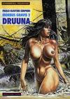 Cover for Schwermetall präsentiert (Kunst der Comics / Alpha, 1986 series) #17 - Morbus Gravis 2 - Druuna