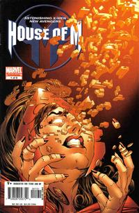 Cover Thumbnail for House of M (Marvel, 2005 series) #1 [Joe Quesada Cover]