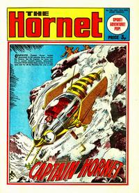 Cover for The Hornet (D.C. Thomson, 1963 series) #538