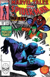 Cover Thumbnail for Marvel Tales (Marvel, 1966 series) #241 [Direct Edition]