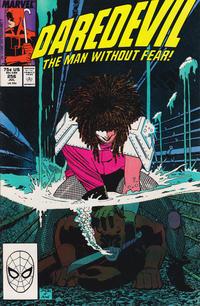 Cover Thumbnail for Daredevil (Marvel, 1964 series) #256 [Direct]