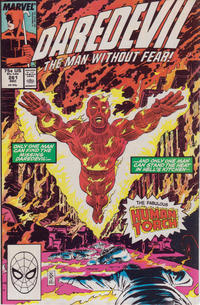 Cover Thumbnail for Daredevil (Marvel, 1964 series) #261 [Direct]