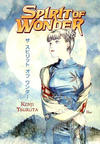 Cover for Spirit of Wonder (Dark Horse, 1998 series)
