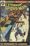 Cover for L'Étonnant Spider-Man (Editions Héritage, 1969 series) #13