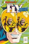 Cover for The Fly (DC, 1991 series) #12 [Direct]