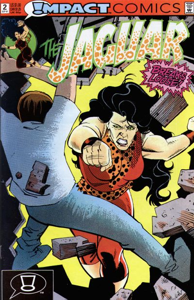Cover for The Jaguar (DC, 1991 series) #2 [Direct]