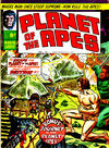 Cover for Planet of the Apes (Marvel UK, 1974 series) #15