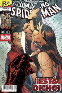 Cover Thumbnail for The Amazing Spider-Man, el Asombroso Hombre Araña (Editorial Televisa, 2005 series) #24