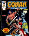 Cover for Conan il barbaro (Comic Art, 1989 series) #30